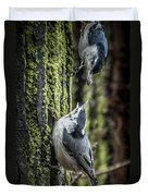 White Breasted Nuthatchs Duvet Cover
