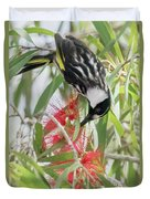 White-cheeked Honeyeater Feeding Duvet Cover