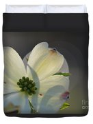 White Dogwood Blooms Series Photo K Duvet Cover