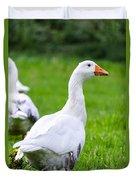 White Duck  Duvet Cover