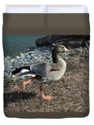 White Fronted Goose Duvet Cover by Skip Willits
