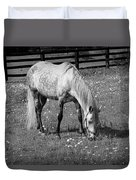 White Horse In A Pasture Among Daisy Flowers Duvet Cover