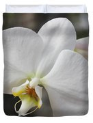 White Orchid Duvet Cover by Elisabeth Witte