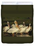 White Pelicans Duvet Cover