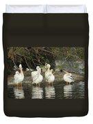White Pelicans Grooming Duvet Cover