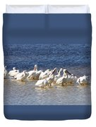 White Pelicans On Sanibel Island Duvet Cover