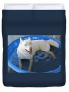 White Siberian Husky In Pool Duvet Cover