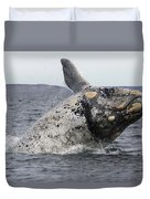 White Southern Right Whale Breaching Duvet Cover
