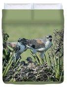 White-tailed Hawk Family Duvet Cover