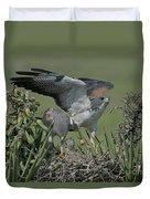 White-tailed Hawks At Nest Duvet Cover