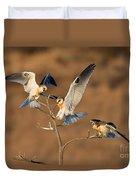 White-tailed Kite Trio Duvet Cover