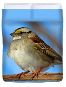 White Throated Sparrow And Blue Sky Duvet Cover