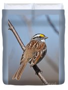 White-throated Sparrow Pictures 108 Duvet Cover