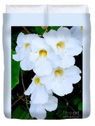 White Thunbergia On The Fence Duvet Cover