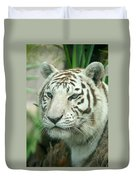 White Tiger Duvet Cover by Karen Lindquist