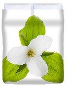 White Trillium Flower  Duvet Cover by Elena Elisseeva