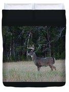 Whitetail Buck 1 Duvet Cover