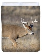 Whitetail Buck On The Move Duvet Cover