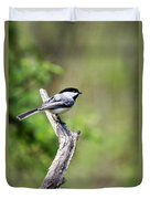 Wild Birds - Black Capped Chickadee Duvet Cover