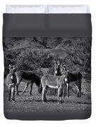 Wild Burros In Black And White  Duvet Cover