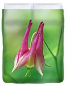 Wild Columbine Wildflower - Aquilegia Canadensis Duvet Cover