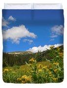 Wild Flowers In Rocky Mountain National Park Duvet Cover