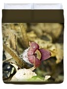 Wild Ginger Wildflower - Asarum Canadense Duvet Cover