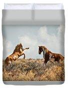 Wild Horse Fight Duvet Cover