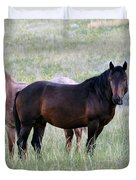 Wild Horses In The Badlands Duvet Cover