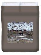 Wild Nevada Mustangs Duvet Cover