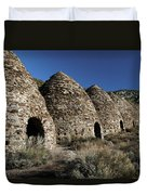 Wild Rose Charcoal Kilns Death Valley Img 4290 Duvet Cover