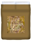 Wild Sage Wormwood Artemisia Figida Yellow Flower Duvet Cover