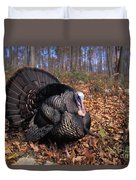 Wild Turkey Displaying Duvet Cover