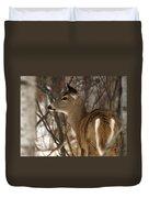 Wild White-tailed Deer Duvet Cover
