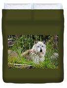 Wild Wolf Duvet Cover