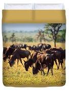 Wildebeests Herd. Gnu On African Savanna Duvet Cover