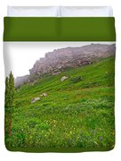 Wildflowers And Mountainous Bluffs At Point Amour In Labrador Duvet Cover