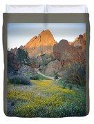 1b6430 Wildflowers In Pinnacles National Park Duvet Cover
