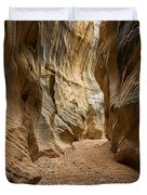 Willis Creek Slot Canyon 1 - Grand Staircase Escalante National Monument Utah Duvet Cover