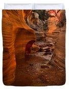 Willis Creek Slot Canyon Duvet Cover