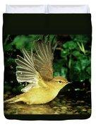 Willow Warbler Phylloscopus Trochilus Duvet Cover
