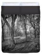Willows In Spring Park Duvet Cover