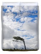 Wind-bent Flag Tree In Tierra Del Fuego Duvet Cover