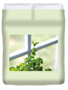 Window Herb Garden Duvet Cover