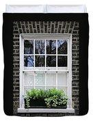 Window In London Duvet Cover by Elena Elisseeva
