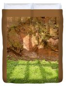 Window Reflections On Grass And Rock Face Duvet Cover