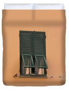 Window With Shutter Duvet Cover
