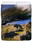 Windswept Hawthorn Tree Duvet Cover