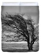 Windswept Tree On Knapp Hill Duvet Cover by Paul Gulliver