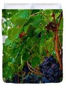 Wine Grapes On The Vine Duvet Cover